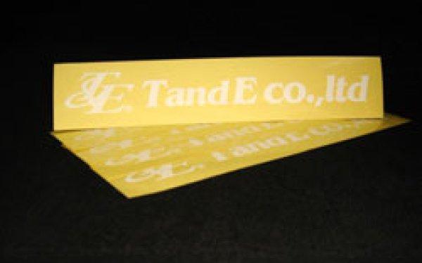 画像1: NEW[TandE]ステッカー (1)